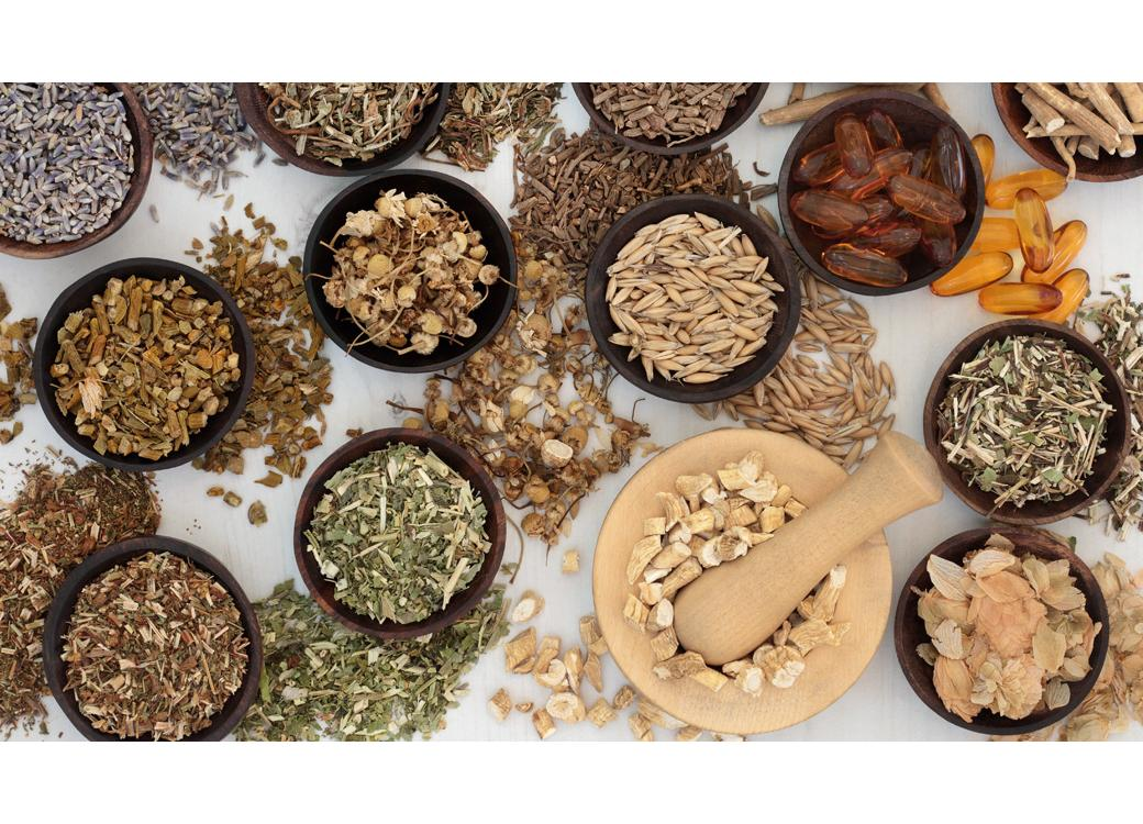 Adaptogens — Nature's Stress Busters
